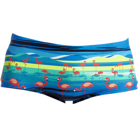 Funky Trunks Plain Front Uimahousut Miehet, prancercise